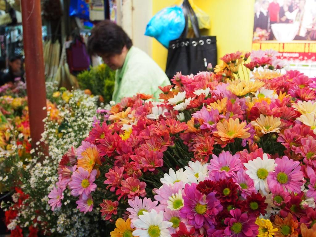 panagbenga flower festival baguio philipines